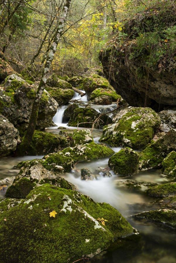 Rio Mundo source, Natural Park Los Calares del río Mundo y de la Sima. Rio Mundo source, Natural Park Los Calares del río Mundo y de la Sima, Sierra de royalty free stock photos
