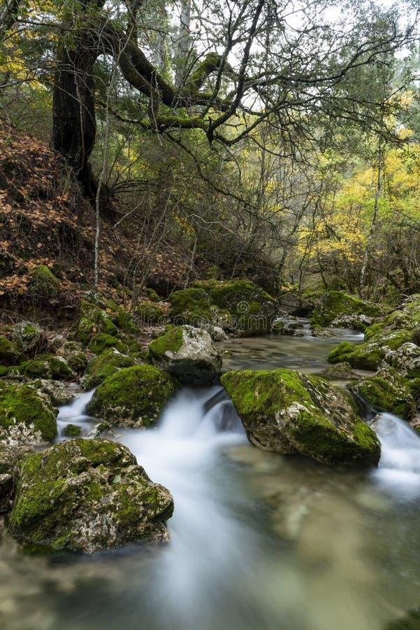 Rio Mundo source, Natural Park Los Calares del río Mundo y de la Sima, Sierra de Alcaraz y del Segura, Albacete province,. Autonomous community of Castilla royalty free stock photos