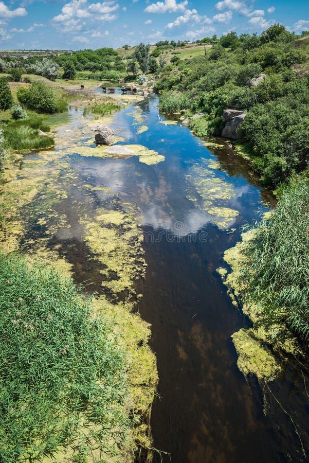 Rio na garganta de Aktovsky, Ucrânia Rochas grandes no rio pequeno e imagem de stock