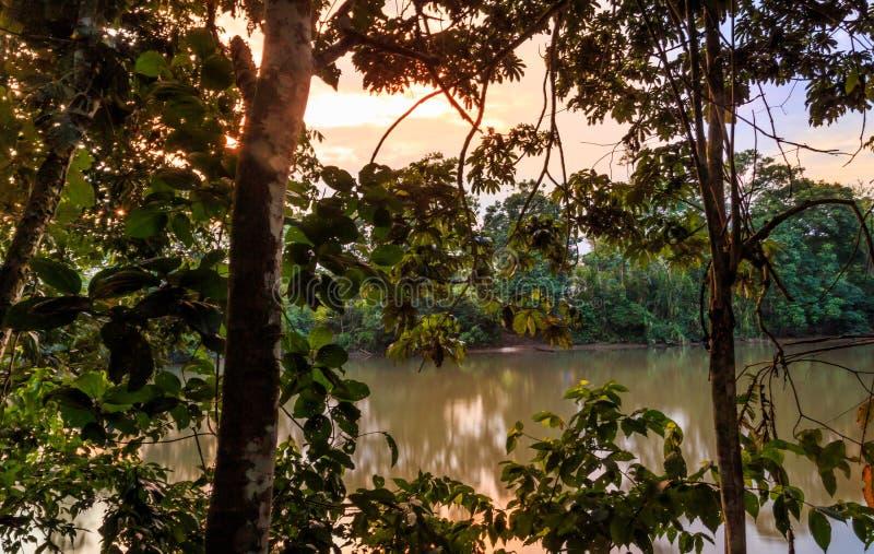 Rio Napo image libre de droits