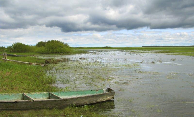 Rio natural de Biebrza do pântano da largura do lanscape no Polônia Parque nacional fotos de stock royalty free