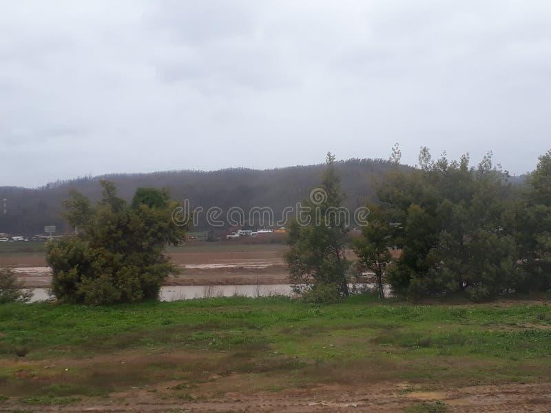 Rio nebuloso fotografia de stock