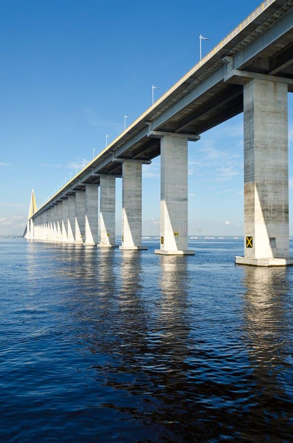Download Rio Negro Bridge Royalty Free Stock Image - Image: 25853876