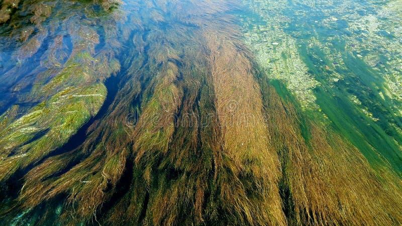 Rio no kreta foto de stock