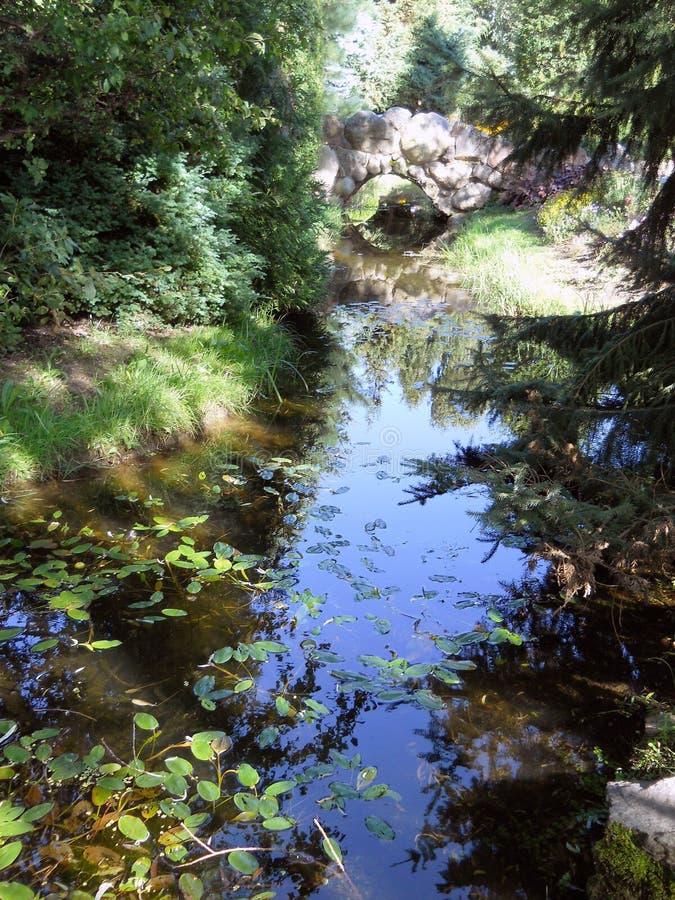 Rio no parque com árvores e flores imagens de stock