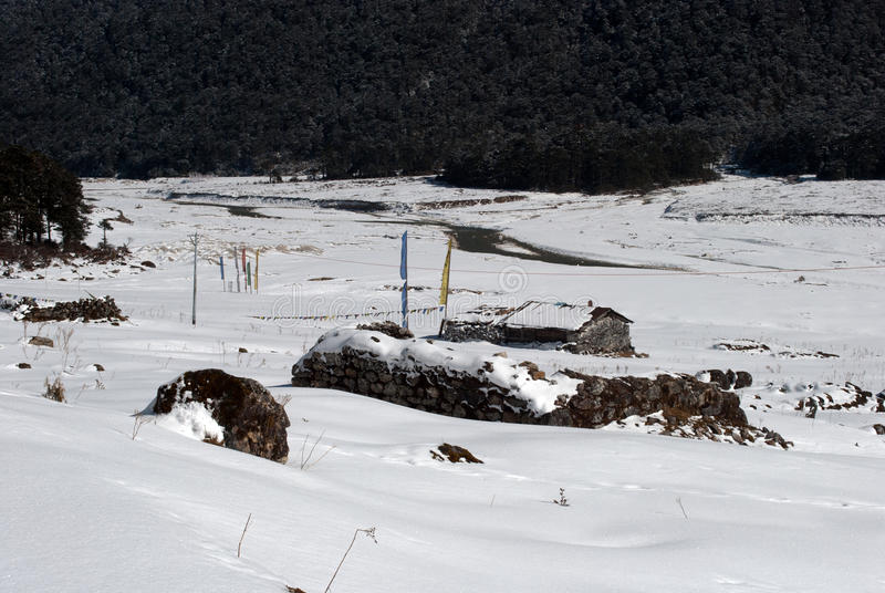 Rio no vale de Yumthang imagens de stock royalty free