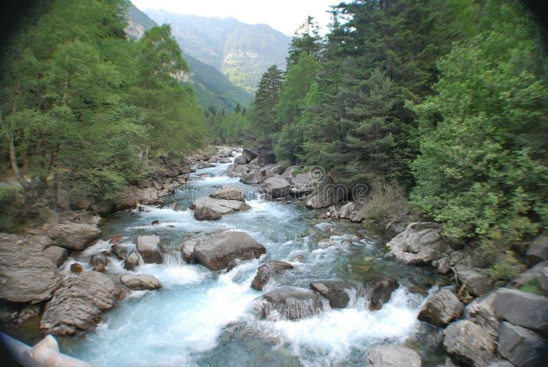 Rio no vale do bujaruelo fotografia de stock