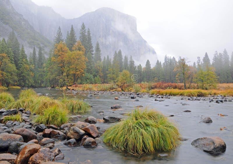 Rio no vale enevoado de Yosemite fotos de stock royalty free