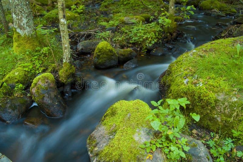 Rio pequeno 4 imagens de stock royalty free