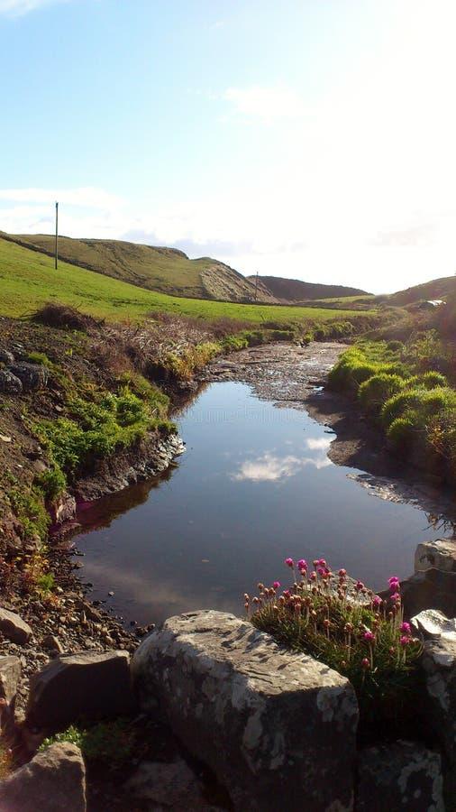 Rio pequeno bonito perto dos penhascos do moher na Irlanda fotos de stock royalty free
