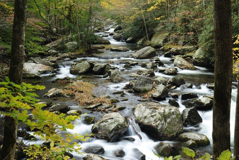 Rio pequeno do pombo em montanhas fumarentos fotos de stock