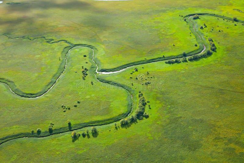 Rio pequeno no prado verde fotos de stock