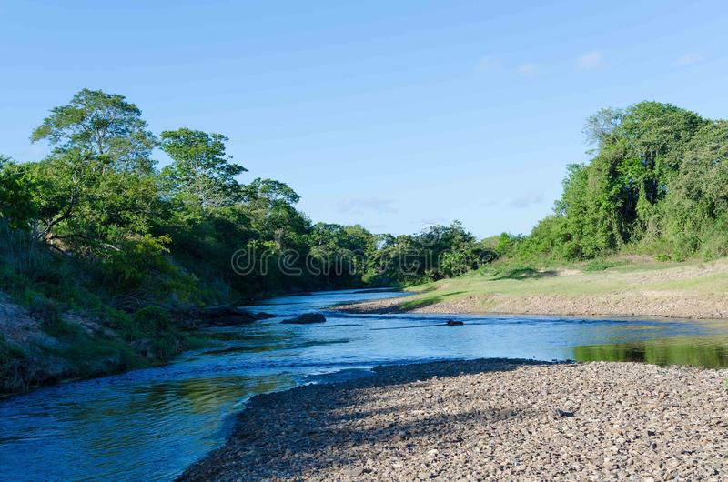 Rio Piauí located in Sergipe. After the dam the river has dried, creating banks of air and shallow stock photos