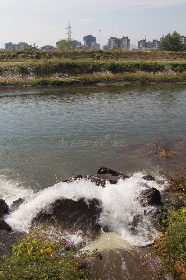 Rio poluído foto de stock