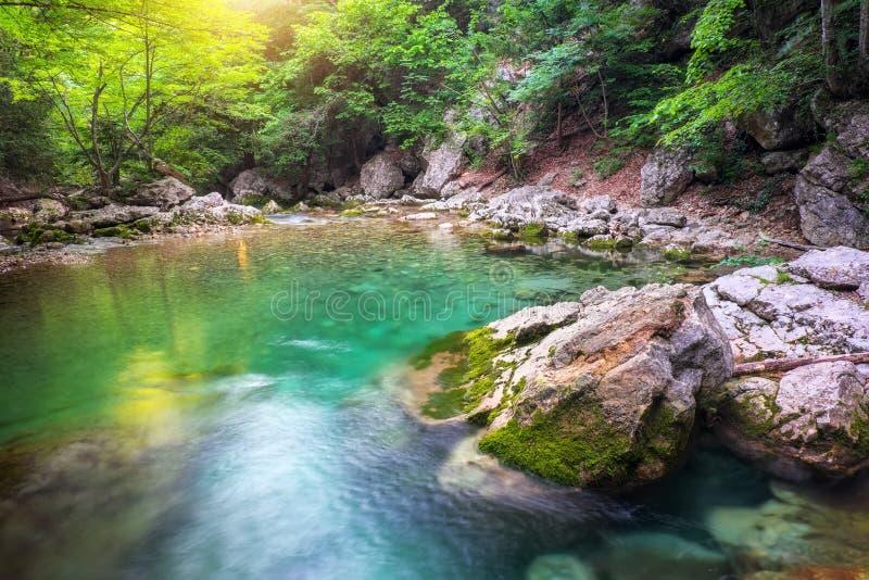 Rio profundamente na montanha no verão fotos de stock