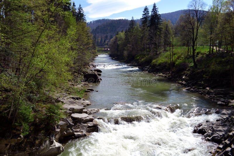 Rio Prut da montanha em Carpathians imagem de stock