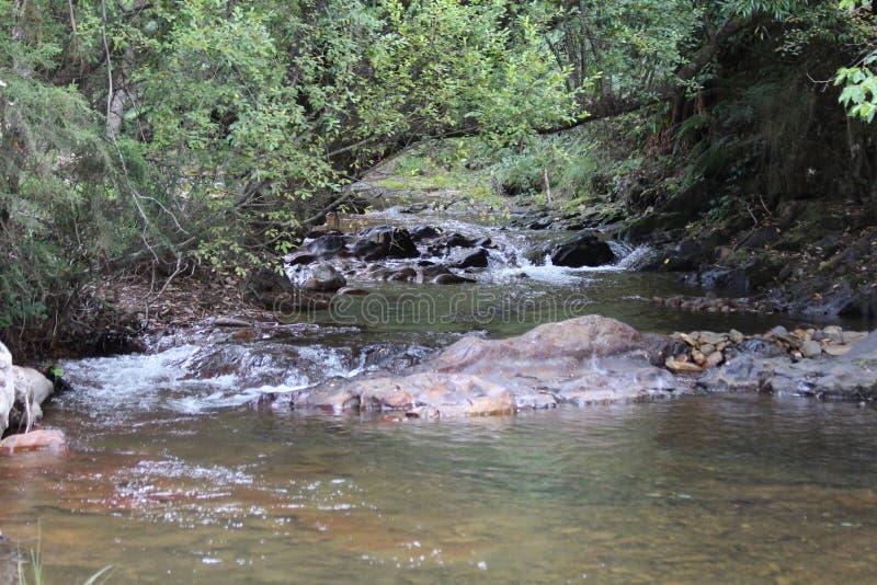 Rio que corre sobre rochas no país alto foto de stock