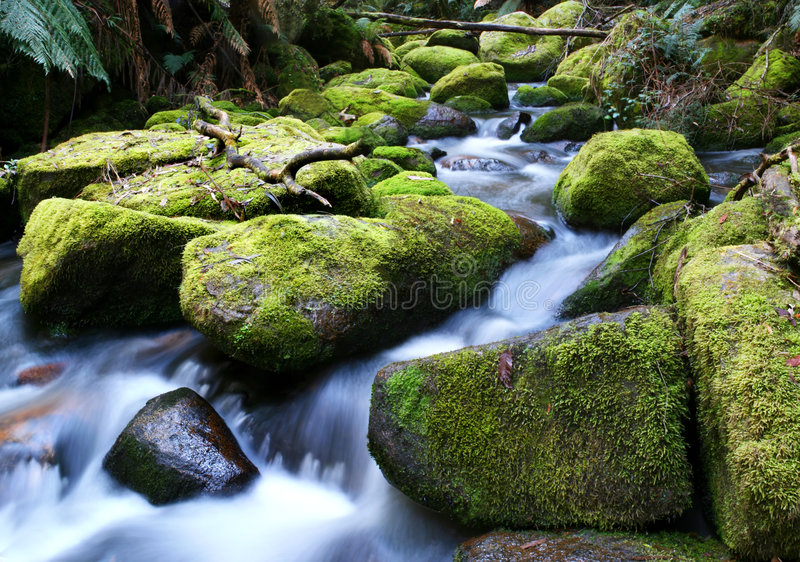 Rio que funciona sobre rochas Mossy fotografia de stock royalty free