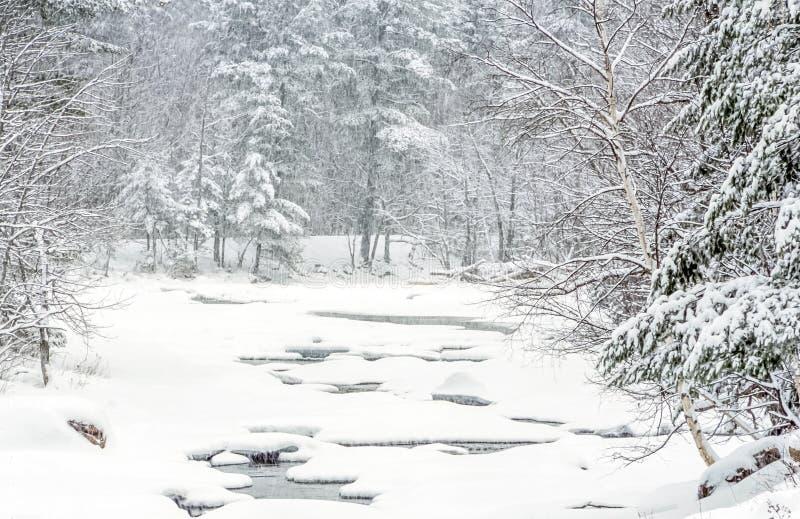 Rio rápido em Autumn White Mountains, New Hampshire imagens de stock