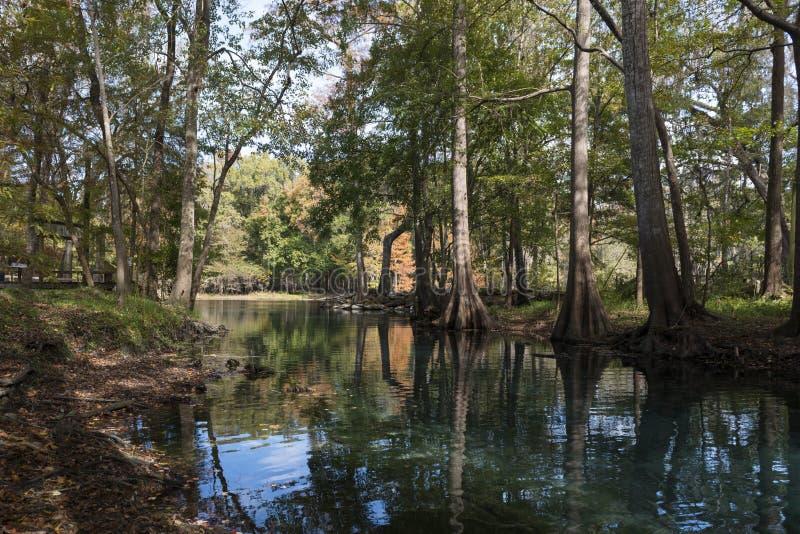 Rio Santa Fe, parque nacional, Florida imagens de stock royalty free