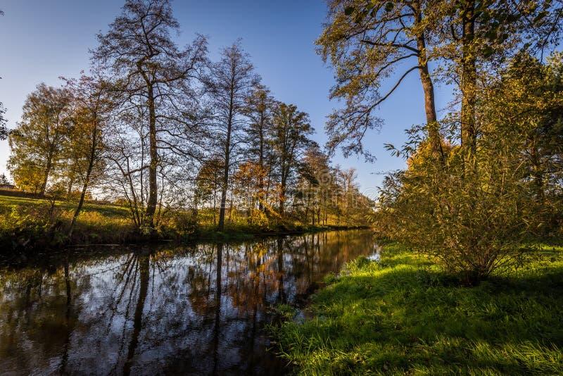 Rio Sazava do outono com as árvores coloridas no por do sol com grande reflexão na água imagens de stock royalty free