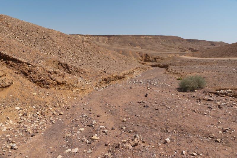 Rio seco no deserto fotografia de stock