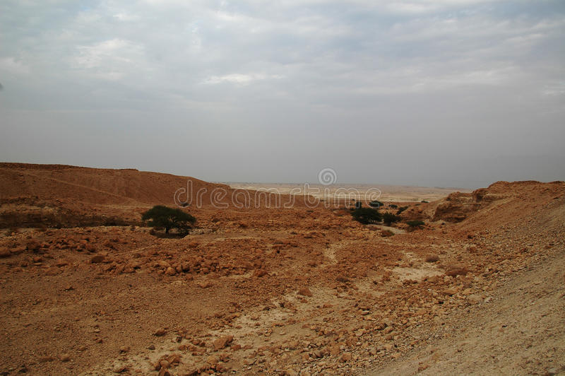 Rio seco no deserto de Judaean, Israel fotos de stock