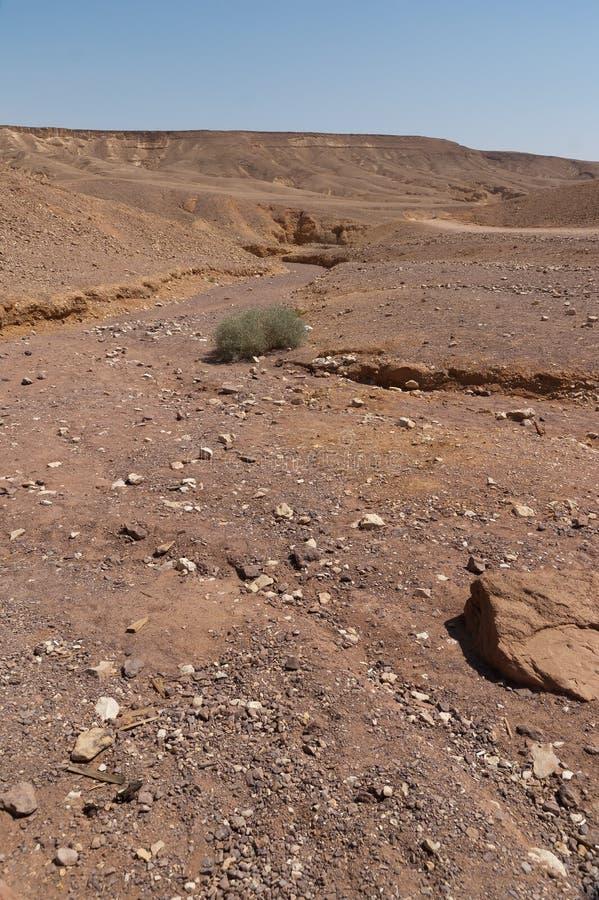 Rio seco no retrato do deserto foto de stock royalty free
