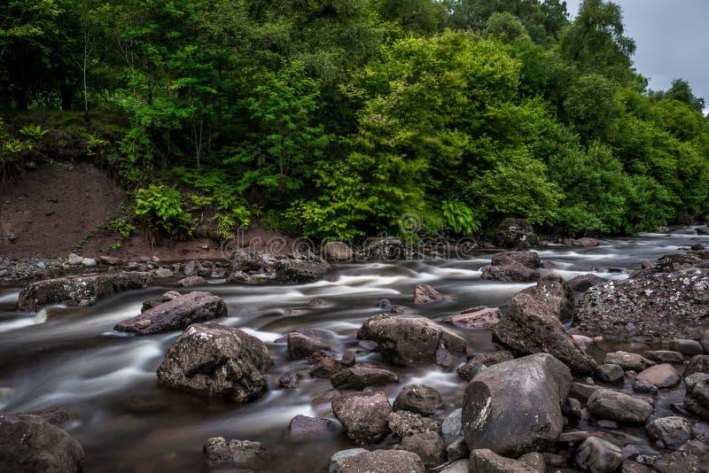 Rio selvagem da montanha que flui através da floresta verde em Escócia imagens de stock