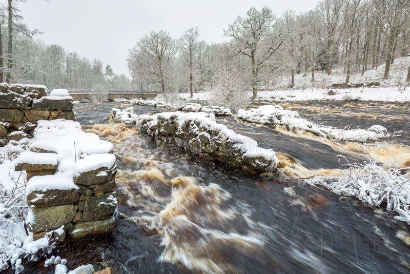 Rio selvagem de Morrum no inverno nevado, Suécia imagem de stock royalty free