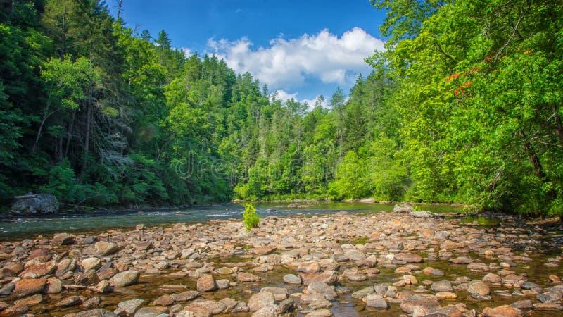 Rio selvagem e cênico de Chattooga, GA/SC fotos de stock royalty free
