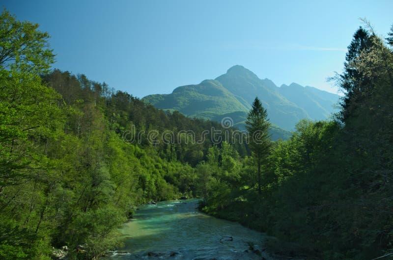 Rio selvagem nos cumes (Soca/Isonzo) foto de stock royalty free