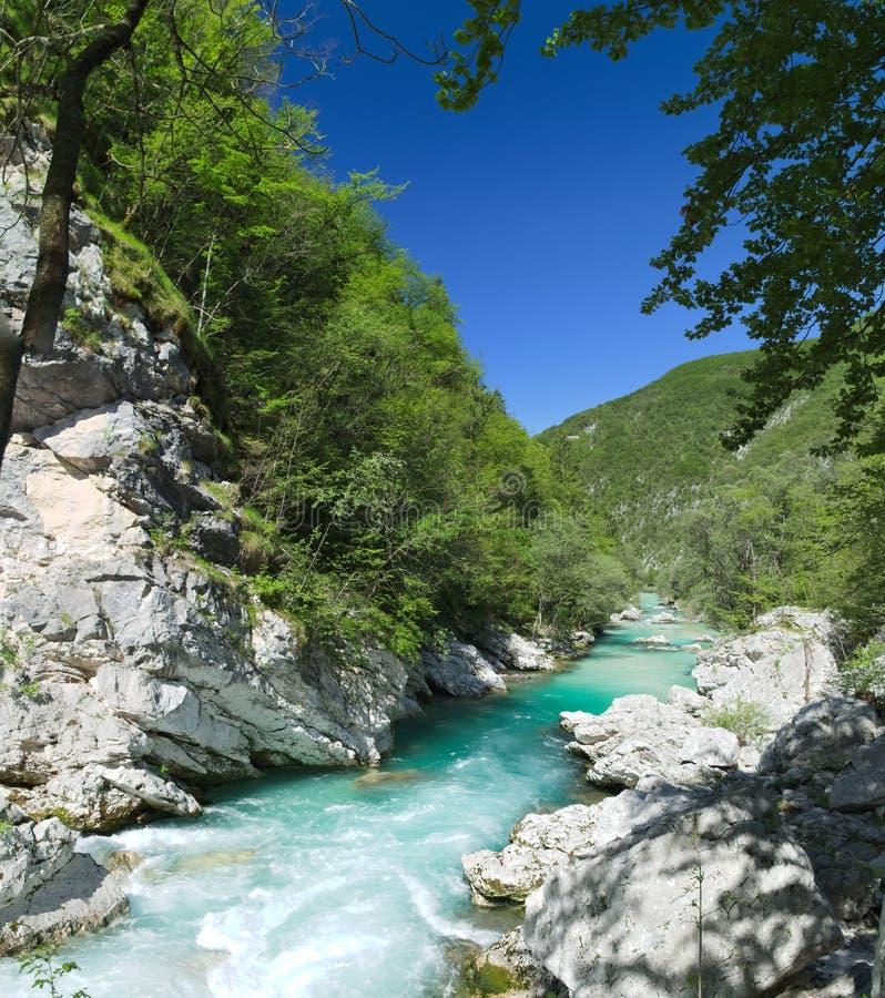 Rio selvagem nos cumes (Soca/Isonzo) imagens de stock royalty free