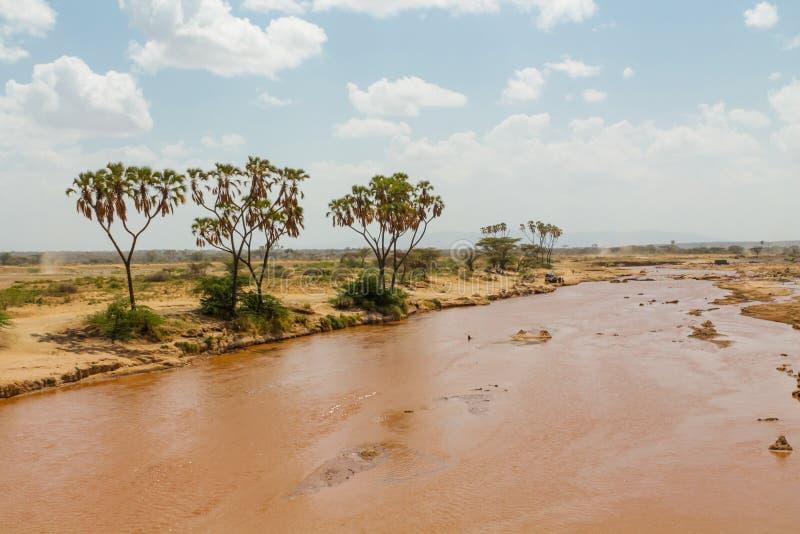 Rio sujo da água no deserto, África fotos de stock royalty free