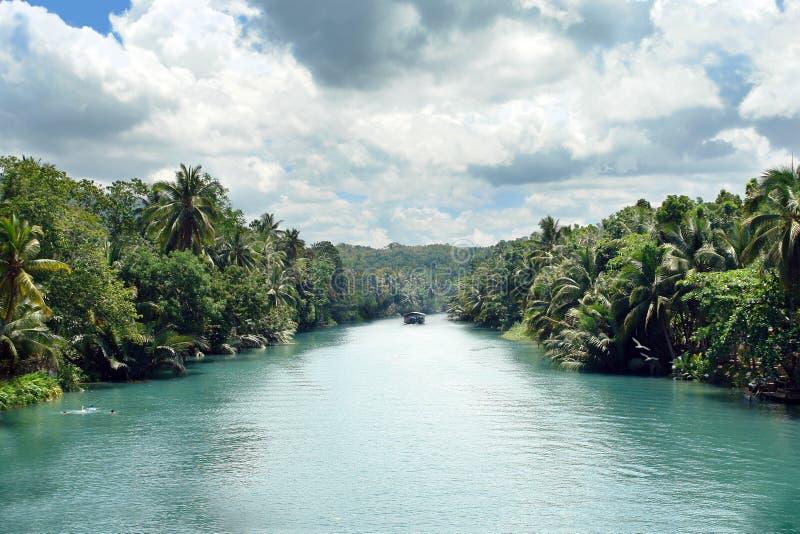 Rio tropical da selva fotografia de stock royalty free