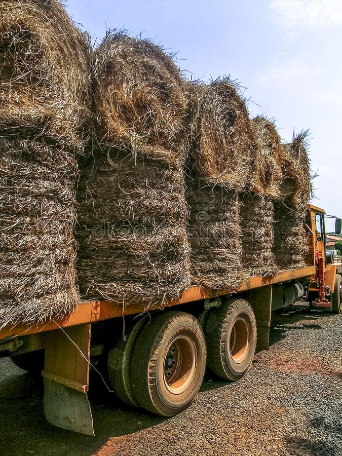 Truck loaded with hay to be used as feed for cattle. Rio Verde, Goiás, Brazil, September 13, 2003. Truck loaded with hay to be used as feed for cattle stock image