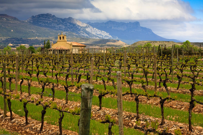 Download Rioja Winery stock image. Image of wine, countryside - 13911481