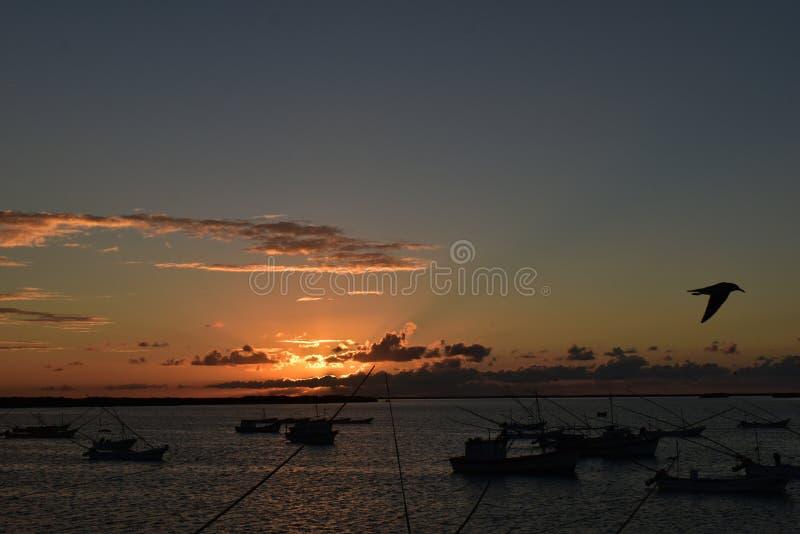 RioLagartos отличает самыми лучшими заходами солнца в мире стоковое фото rf