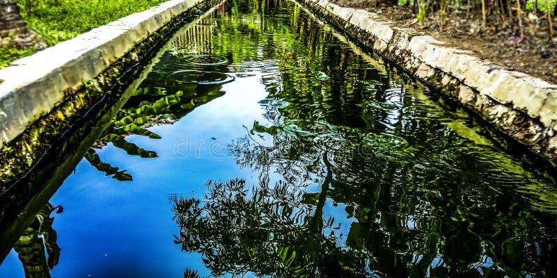 Rios e sombras imagens de stock