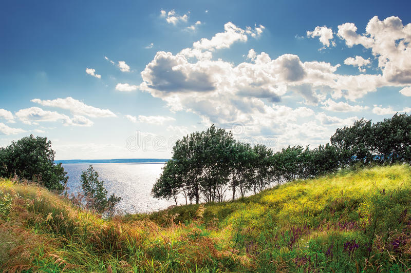 The riot of summer-trees and meadow over the edge of the Volga River Russia in the summer noon. Trees and meadow over the edge of the Volga River Russia in the royalty free stock photos