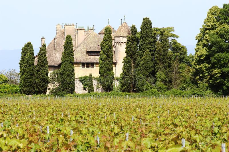 Chateau de Ripaille and vineyard, Ripaille, Savoie, France royalty free stock photos