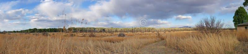 Riparian Landscape stock photography