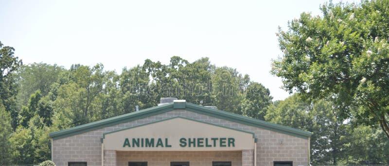 Riparo animale per i cani, i gatti e gli animali domestici fotografia stock