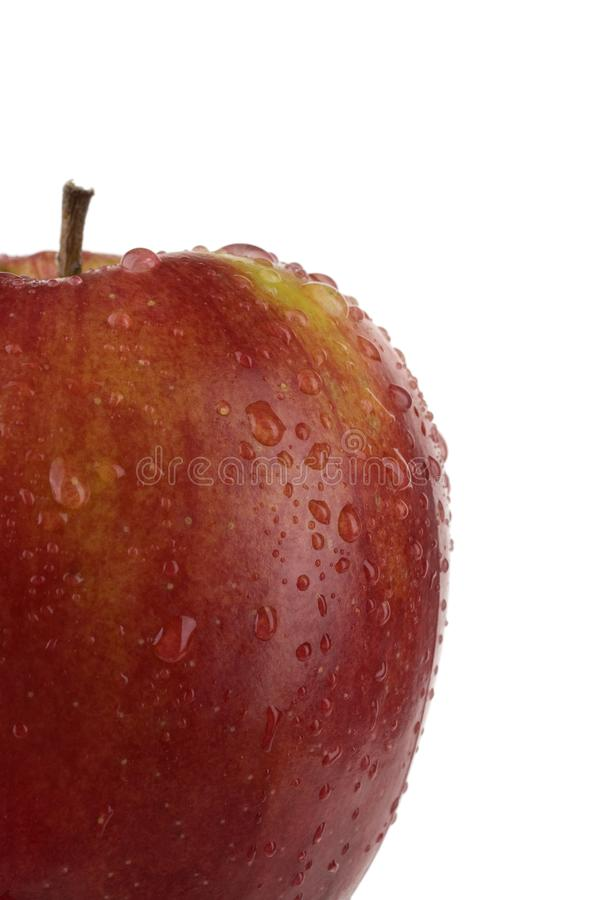 Ripe Apple. stock image