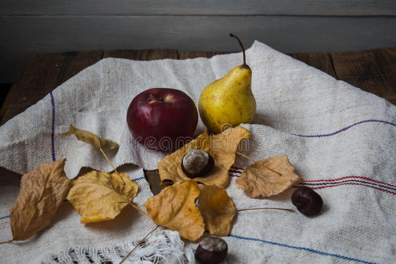 A ripe apple and pear yellow leaves and chestnut royalty free stock image