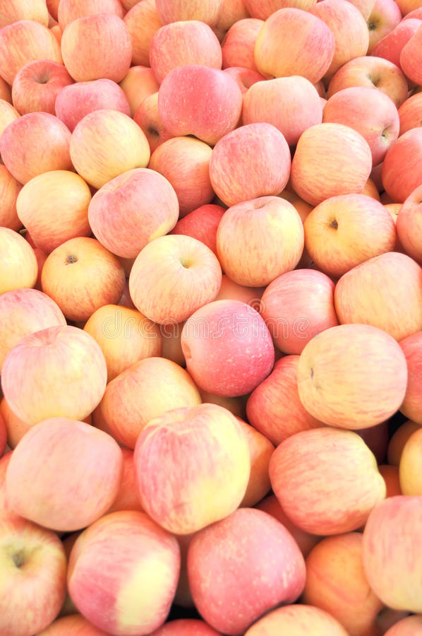 Download Ripe apples stock photo. Image of fruits, apple, sale - 18698762