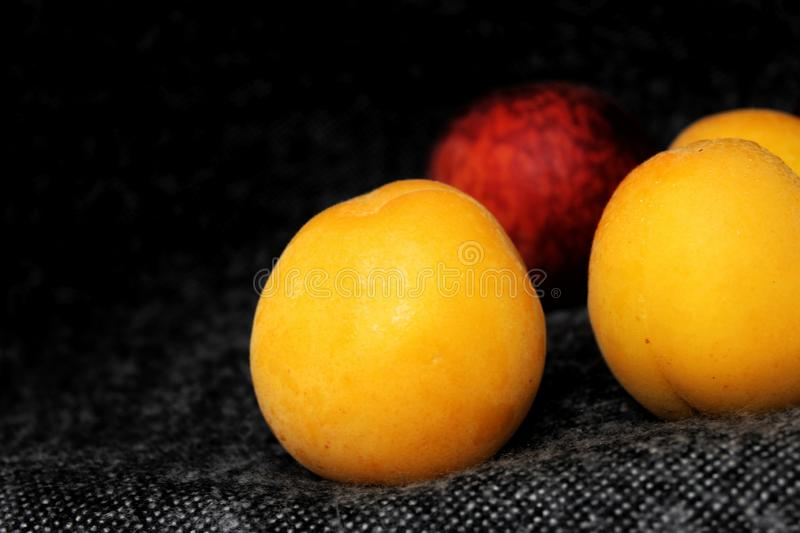 Apricot and peach on a dark background royalty free stock image
