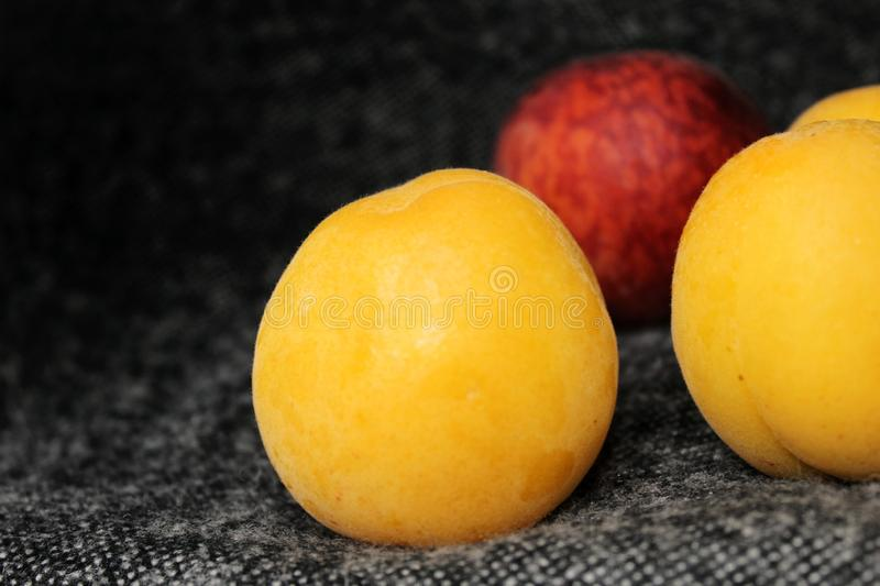 Apricot and peach on a dark background royalty free stock photos