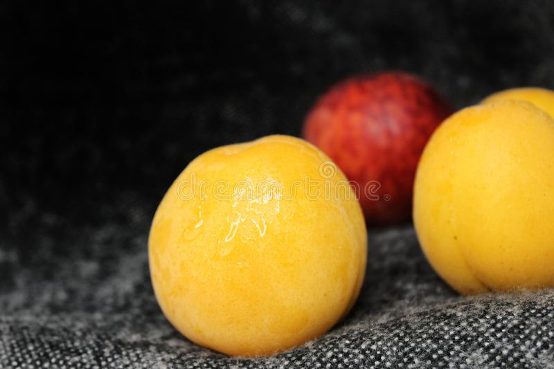 Apricot and peach on a dark background stock images