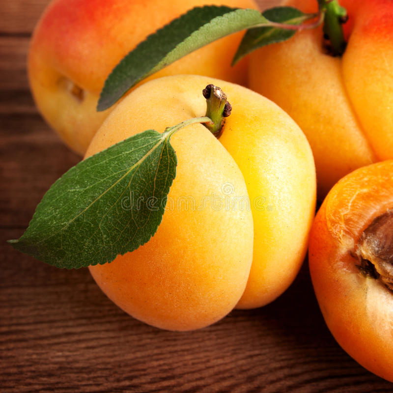 Download Ripe apricots stock image. Image of appetizing, closeup - 26693899
